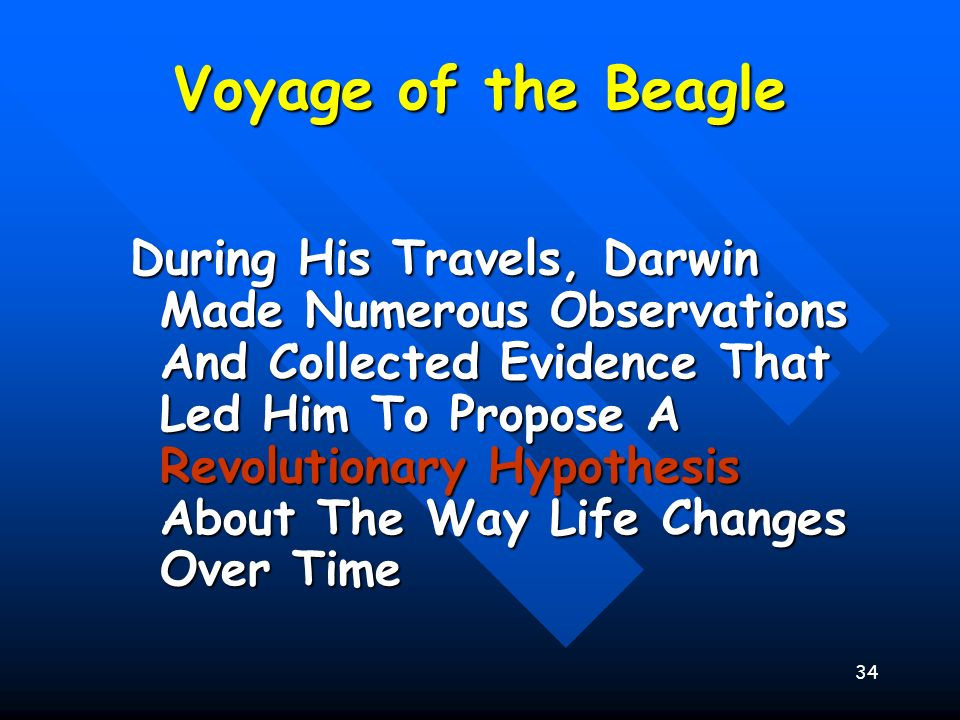 34 Voyage of the Beagle During His Travels, Darwin Made Numerous Observations And Collected Evidence That Led Him To Propose A Revolutionary Hypothesi