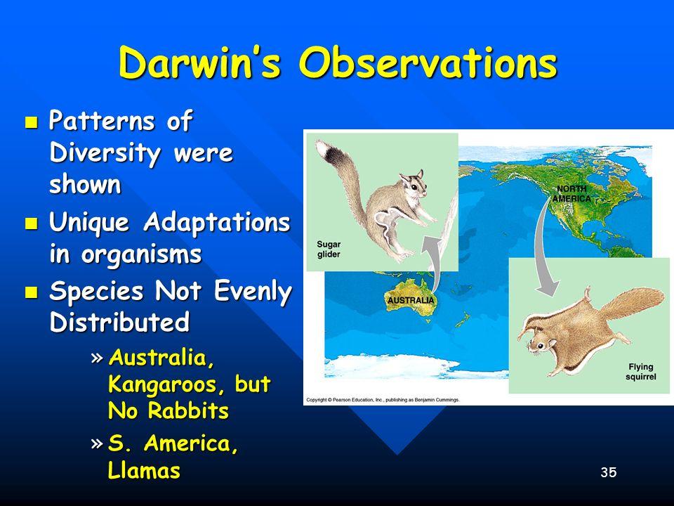 35 Darwins Observations Patterns of Diversity were shown Patterns of Diversity were shown Unique Adaptations in organisms Unique Adaptations in organi
