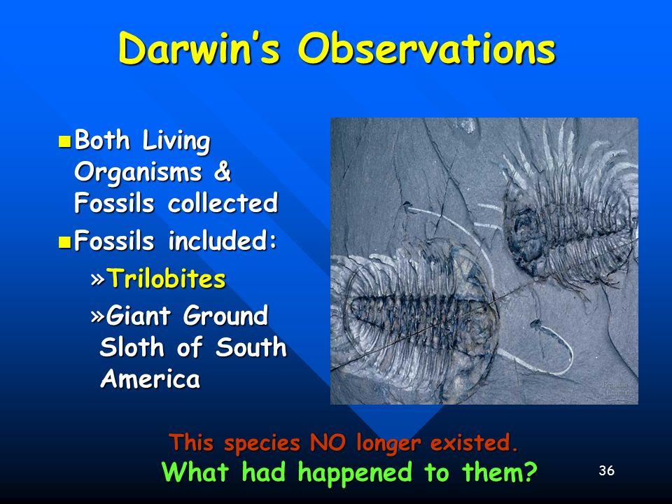 36 Darwins Observations Both Living Organisms & Fossils collected Both Living Organisms & Fossils collected Fossils included: Fossils included: »Trilo
