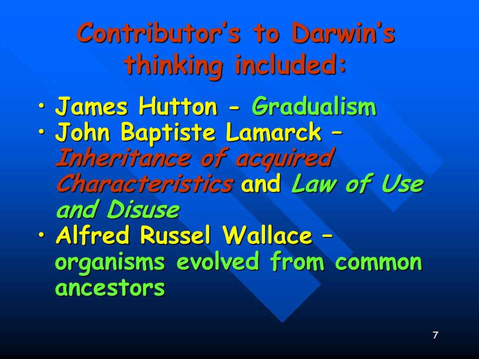 7 : Contributors to Darwins thinking included: James Hutton - GradualismJames Hutton - Gradualism John Baptiste Lamarck – Inheritance of acquired Char