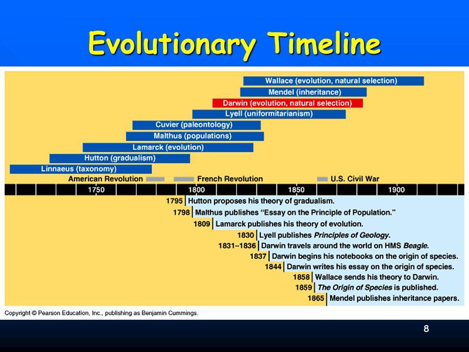 8 Evolutionary Timeline