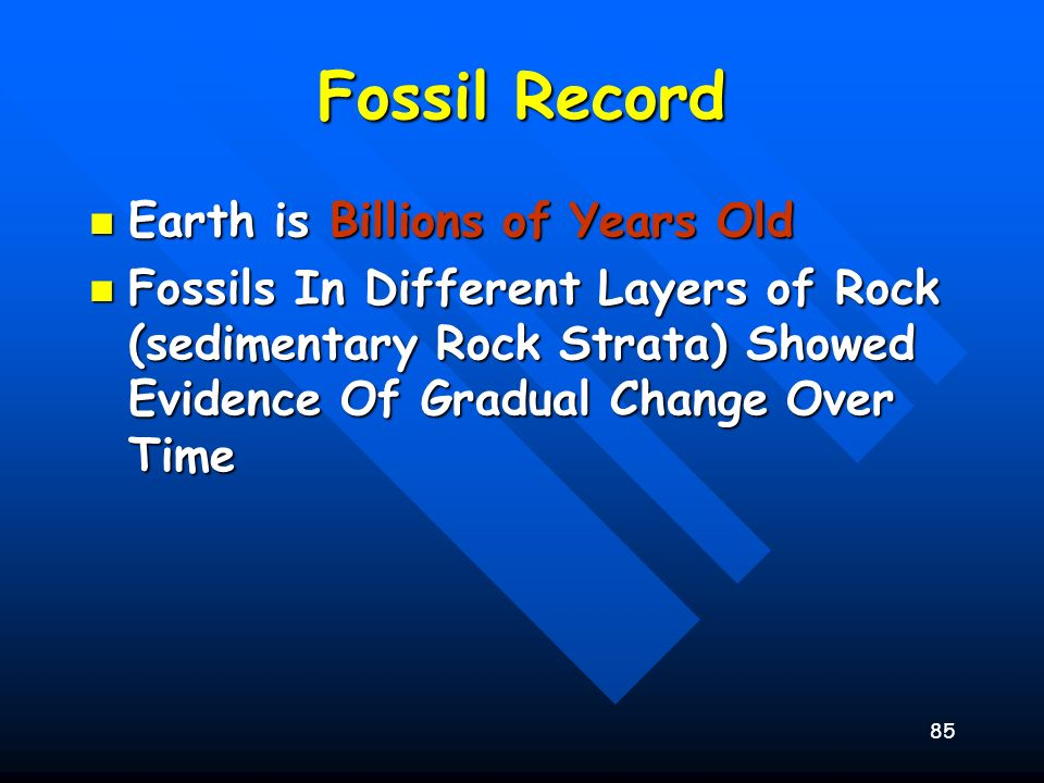 85 Fossil Record Earth is Billions of Years Old Earth is Billions of Years Old Fossils In Different Layers of Rock (sedimentary Rock Strata) Showed Ev