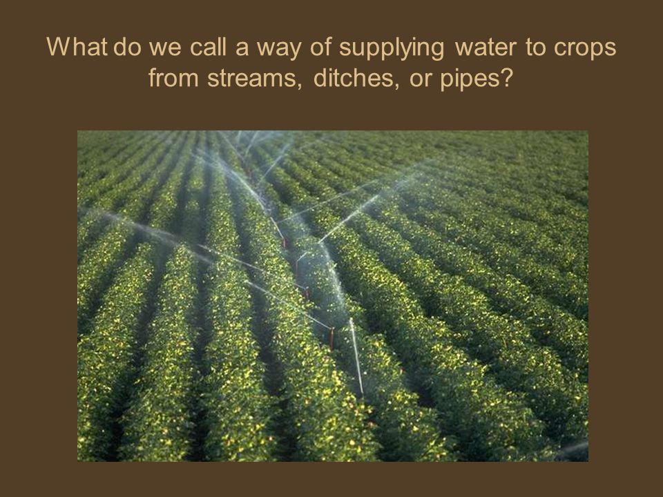 What do we call a way of supplying water to crops from streams, ditches, or pipes