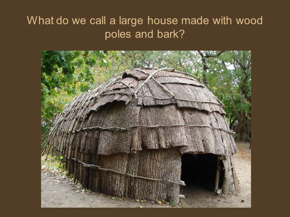 What do we call a large house made with wood poles and bark