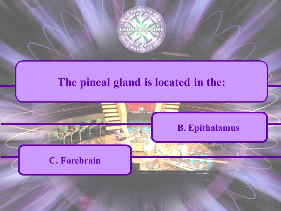 A. Mesencephalon C. Forebrain B. Epithalamus D. Corpus callosum The pineal gland is located in the: