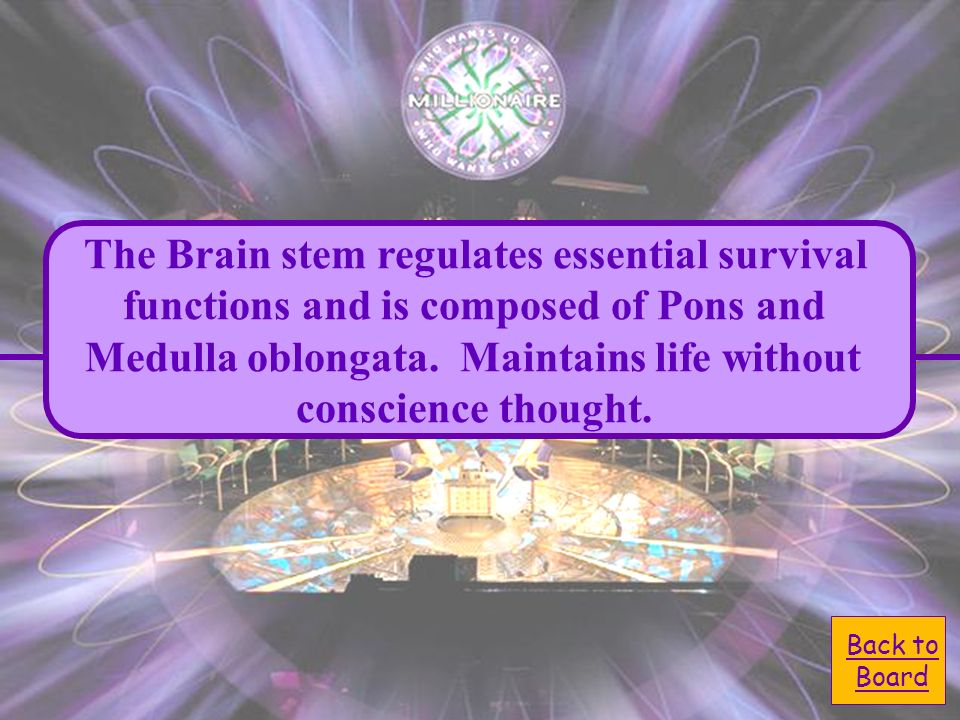 A. Brain stem D. Cerebellum Regulates essential survival functions and composed of Pons and Medulla oblongata. Maintains life without conscience thoug