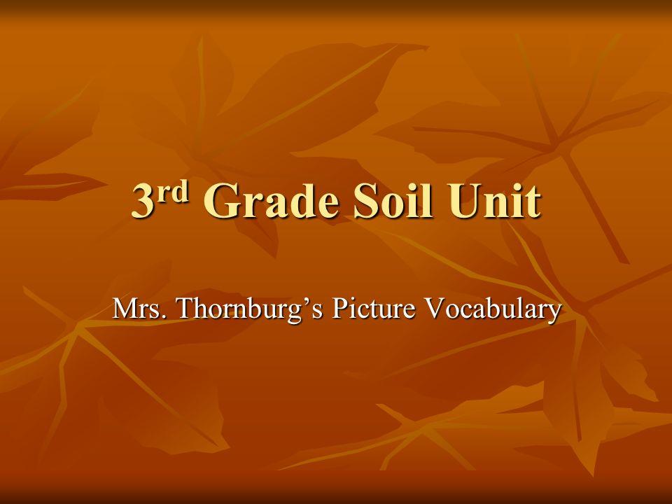 3 rd Grade Soil Unit Mrs. Thornburgs Picture Vocabulary
