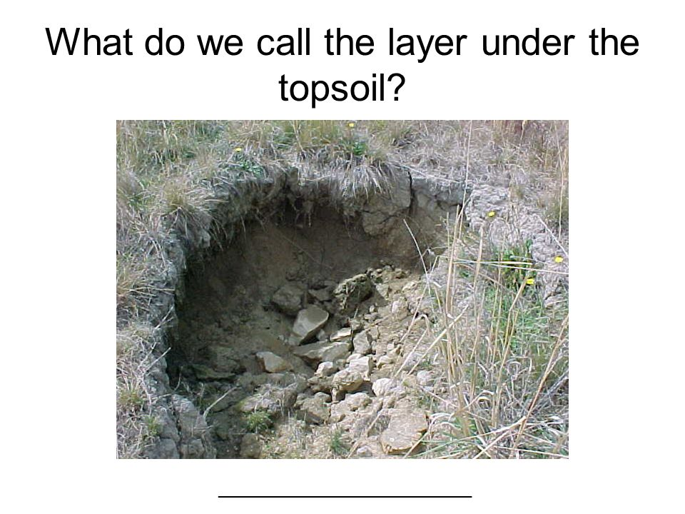 What do we call the layer under the topsoil? ___________________________