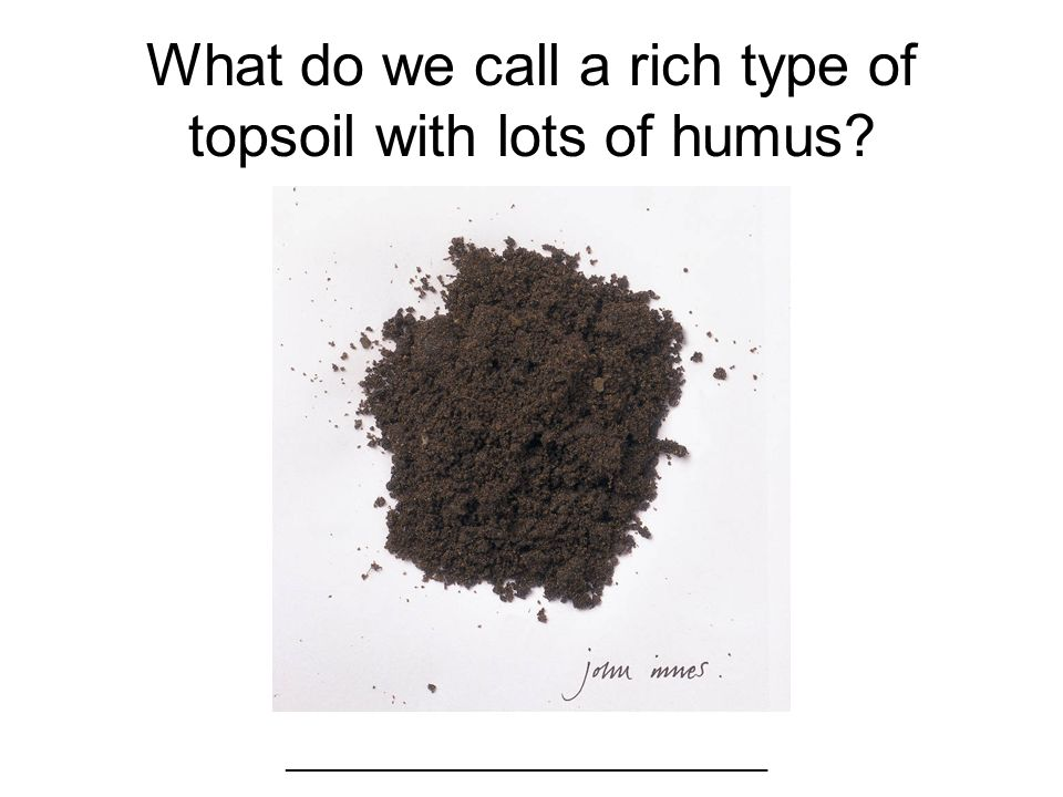 Label the layers of earth. 1. 2. 3. 4. 1.Humus 2.Topsoil 3.Subsoil 4.Bedrock