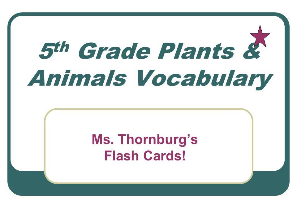 5 th Grade Plants & Animals Vocabulary Ms. Thornburgs Flash Cards!