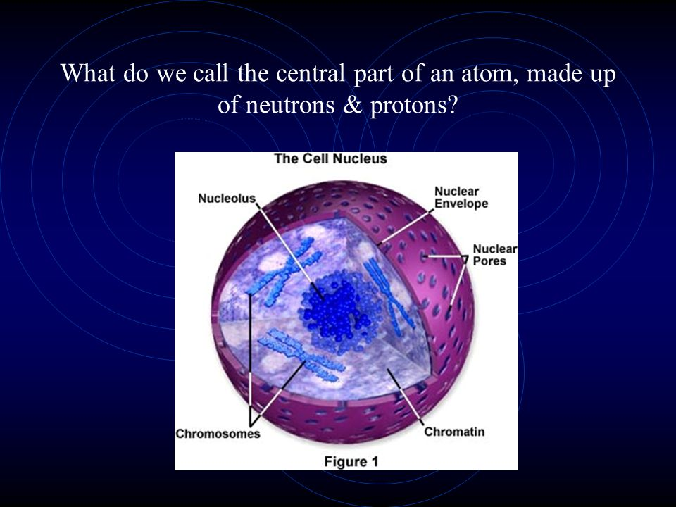 What do we call the central part of an atom, made up of neutrons & protons?