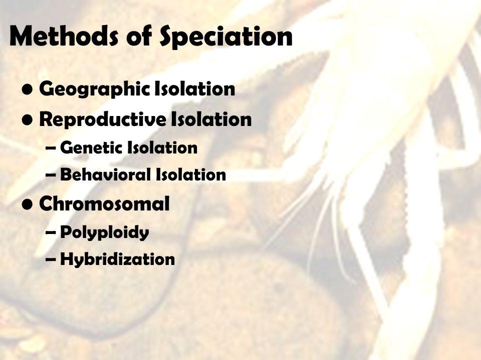 Methods of Speciation Geographic Isolation Reproductive Isolation –Genetic Isolation –Behavioral Isolation Chromosomal –Polyploidy –Hybridization