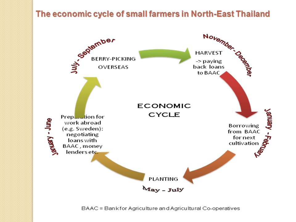 The economic cycle of small farmers in North-East Thailand