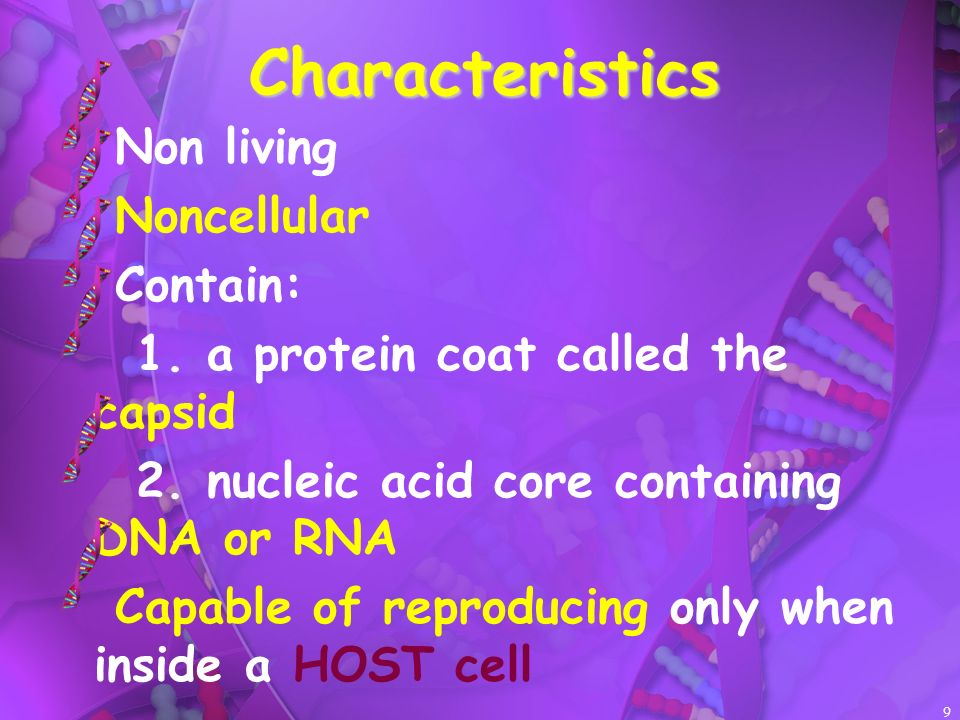 9 Characteristics Non living Noncellular Contain: 1. a protein coat called the capsid 2. nucleic acid core containing DNA or RNA Capable of reproducin