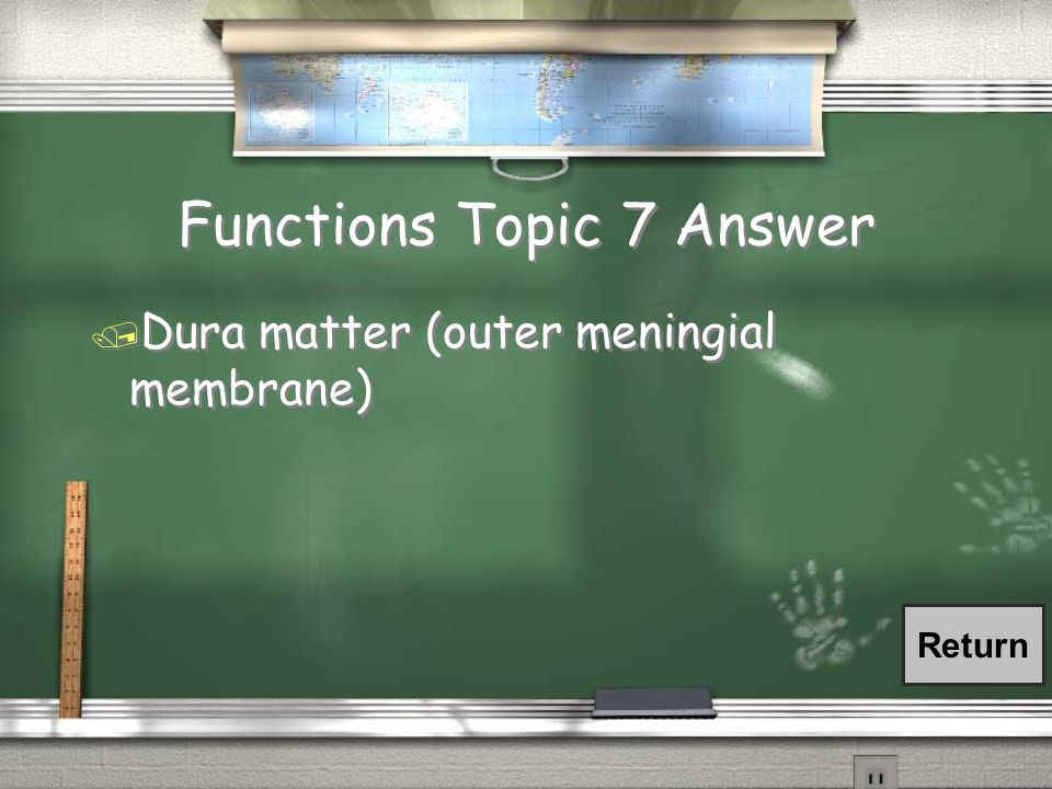 Functions Topic 7 Question / The outermost covering of the brain, composed of tough fibrous connective tissue and forming the periosteum of the skull.