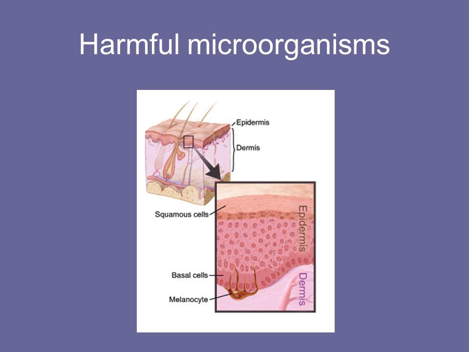 Harmful microorganisms