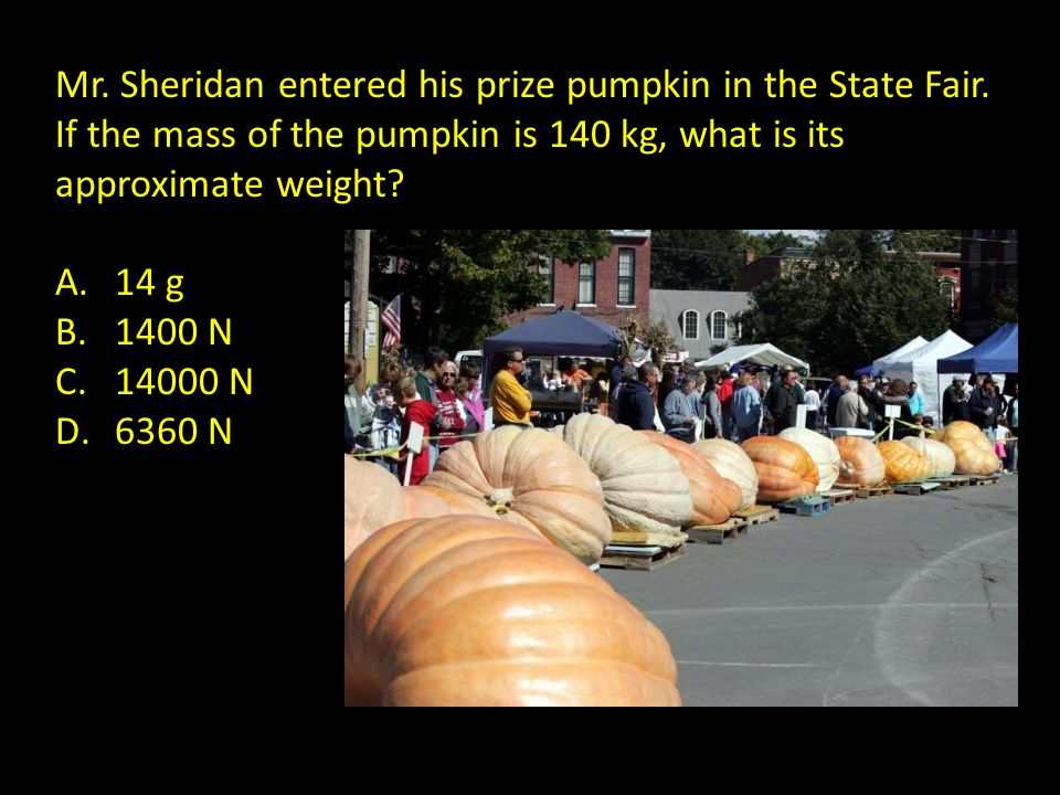 Mr. Sheridan entered his prize pumpkin in the State Fair. If the mass of the pumpkin is 140 kg, what is its approximate weight? A.14 g B.1400 N C.1400