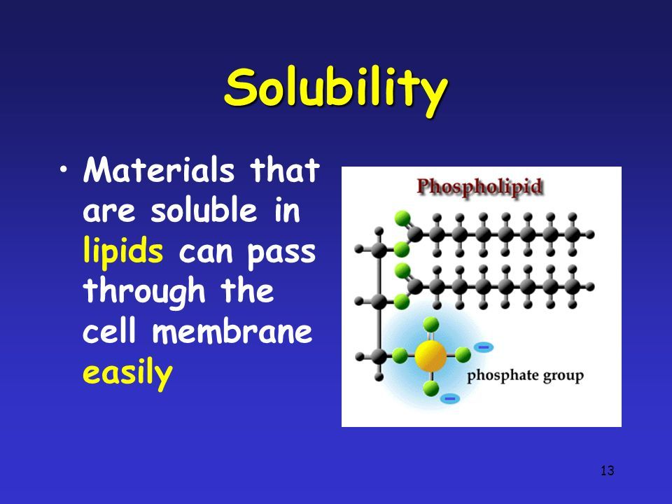 13 Solubility Materials that are soluble in lipids can pass through the cell membrane easily