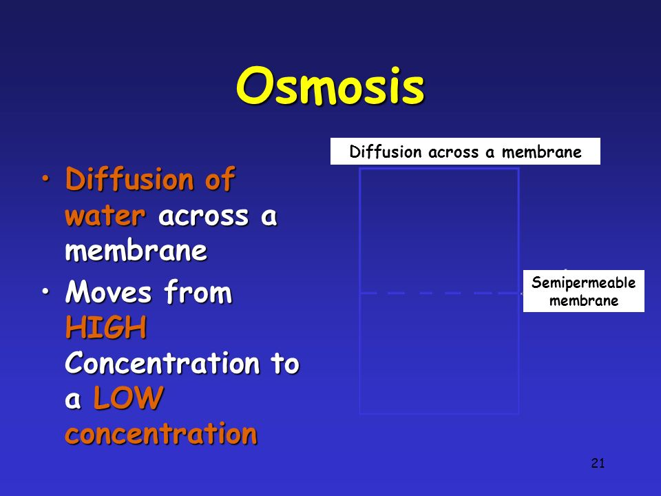 21 Osmosis Diffusion of water across a membraneDiffusion of water across a membrane Moves from HIGH Concentration to a LOW concentrationMoves from HIGH Concentration to a LOW concentration Diffusion across a membrane Semipermeable membrane