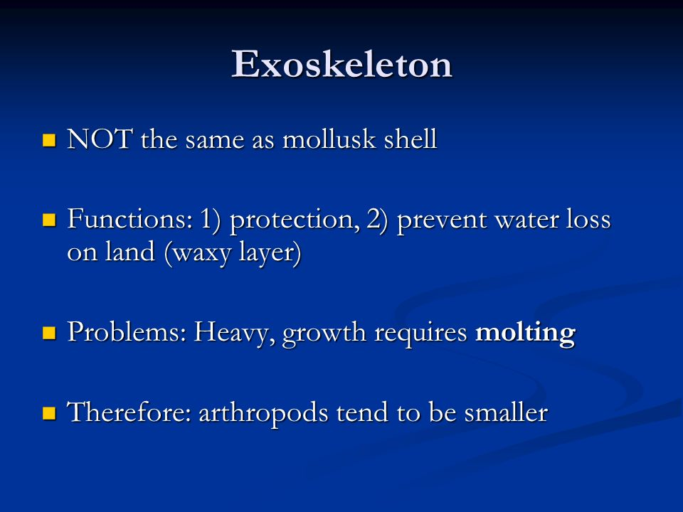 Exoskeleton NOT the same as mollusk shell NOT the same as mollusk shell Functions: 1) protection, 2) prevent water loss on land (waxy layer) Functions: 1) protection, 2) prevent water loss on land (waxy layer) Problems: Heavy, growth requires molting Problems: Heavy, growth requires molting Therefore: arthropods tend to be smaller Therefore: arthropods tend to be smaller