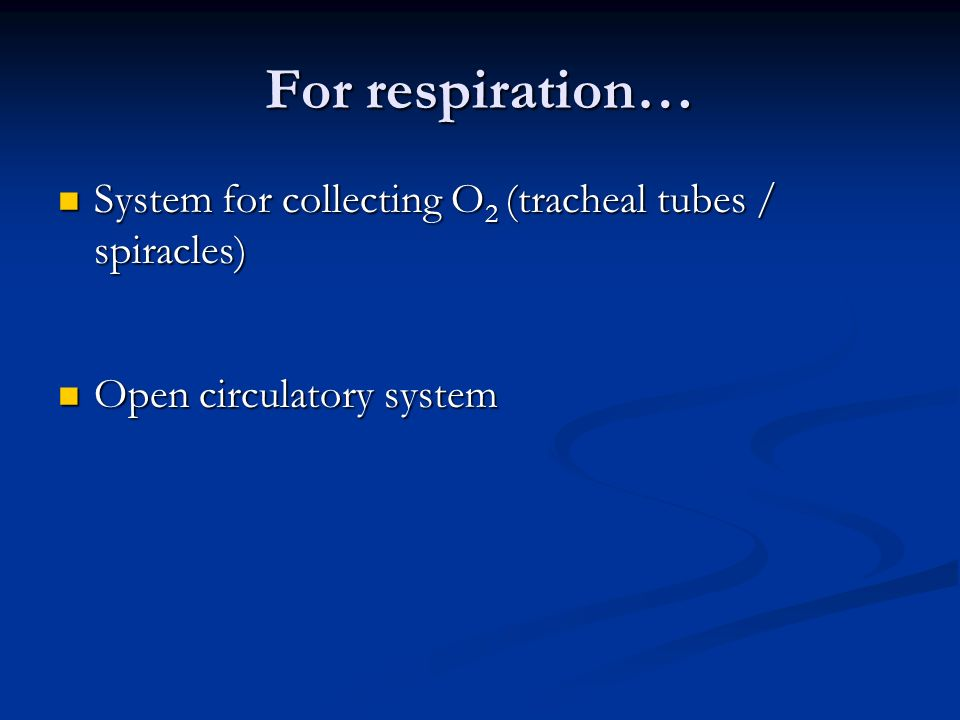 For respiration… System for collecting O 2 (tracheal tubes / spiracles) System for collecting O 2 (tracheal tubes / spiracles) Open circulatory system Open circulatory system