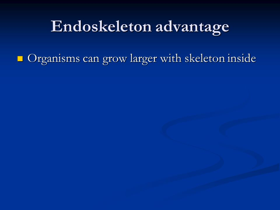 Endoskeleton advantage Organisms can grow larger with skeleton inside Organisms can grow larger with skeleton inside