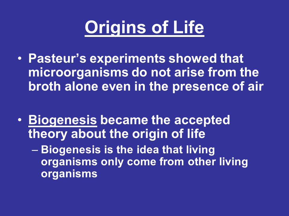 How Did Life Begin On Earth.