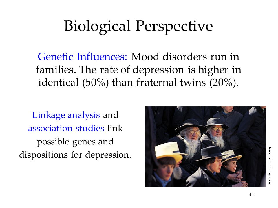 41 Biological Perspective Genetic Influences: Mood disorders run in families. The rate of depression is higher in identical (50%) than fraternal twins