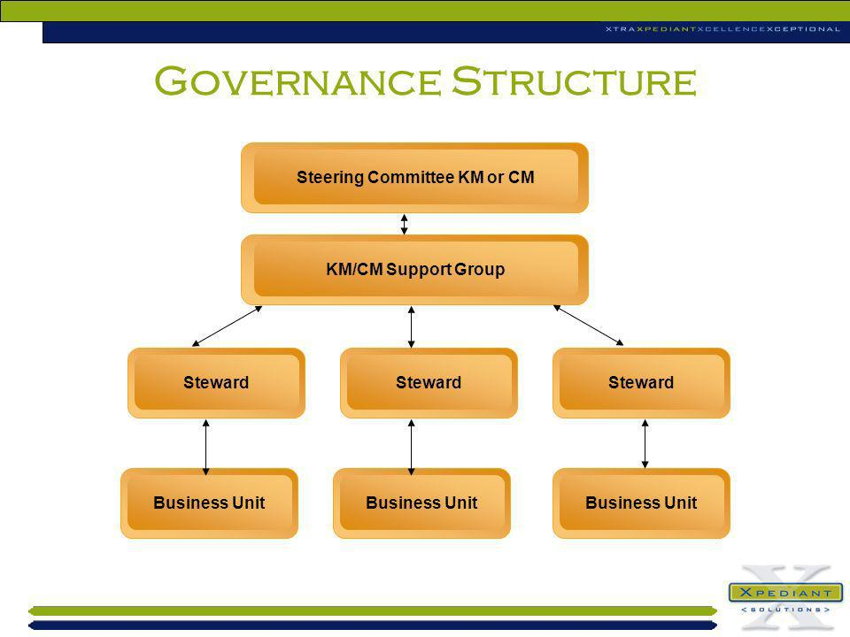 Governance Structure Steering Committee KM or CM KM/CM Support Group Steward Business Unit