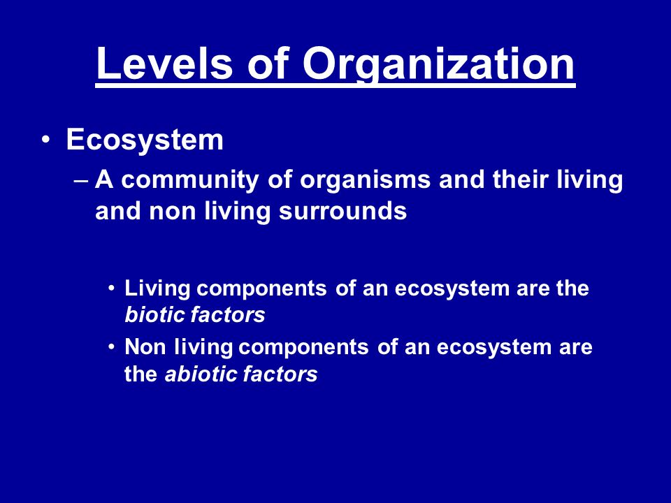 Levels of Organization Community –A group of various species that live in the same habitat and interact with each other Population –group of organisms of one species that interbreed and live in the same place at the same time Organism –living member of species