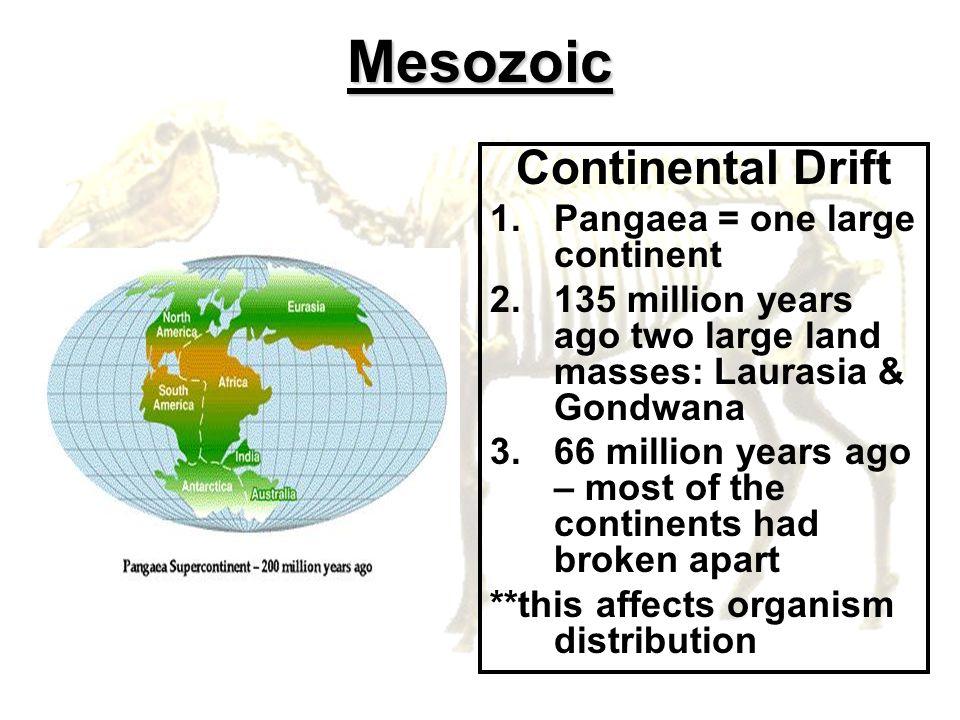 Mesozoic Continental Drift 1.Pangaea = one large continent 2.135 million years ago two large land masses: Laurasia & Gondwana 3.66 million years ago –