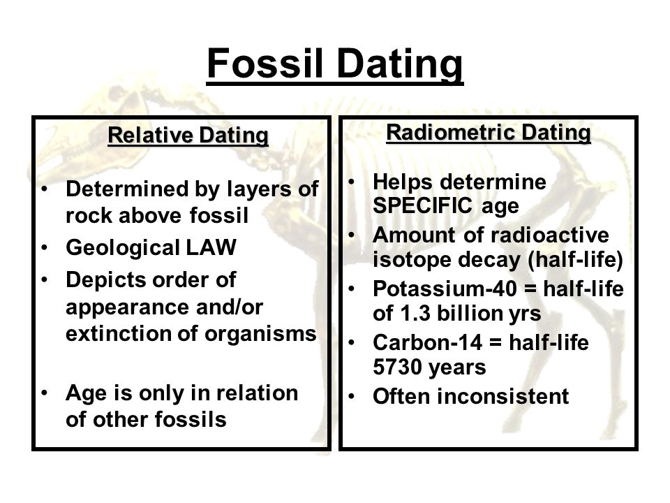 Fossil Dating Relative Dating Determined by layers of rock above fossil Geological LAW Depicts order of appearance and/or extinction of organisms Age