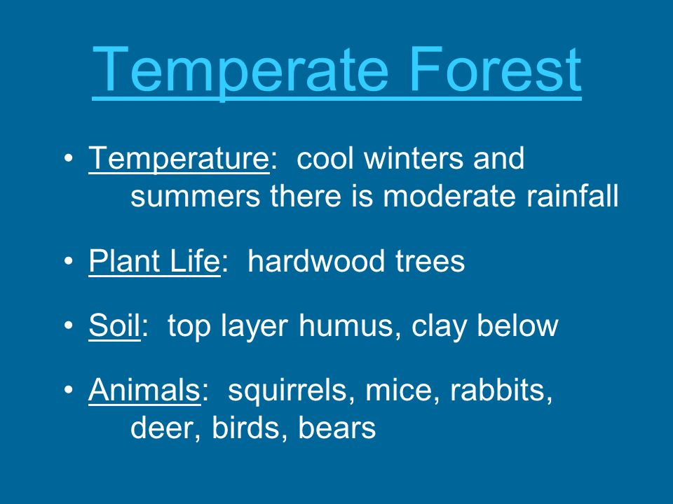 Temperate Forest Temperature: cool winters and summers there is moderate rainfall Plant Life: hardwood trees Soil: top layer humus, clay below Animals