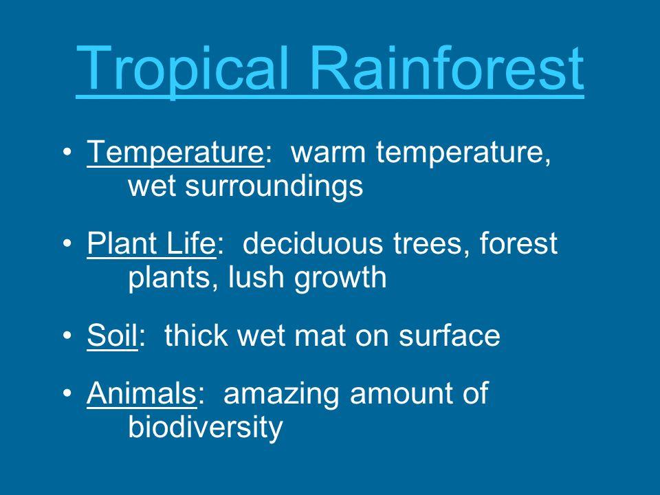 Tropical Rainforest Temperature: warm temperature, wet surroundings Plant Life: deciduous trees, forest plants, lush growth Soil: thick wet mat on sur