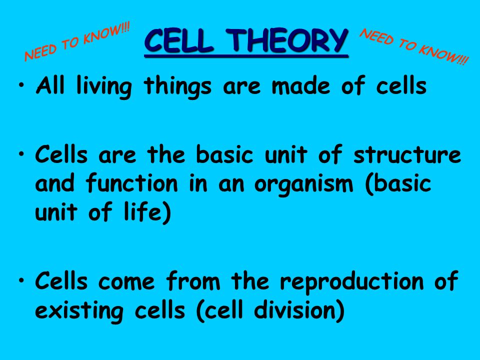 CELL THEORY All living things are made of cells Cells are the basic unit of structure and function in an organism (basic unit of life) Cells come from