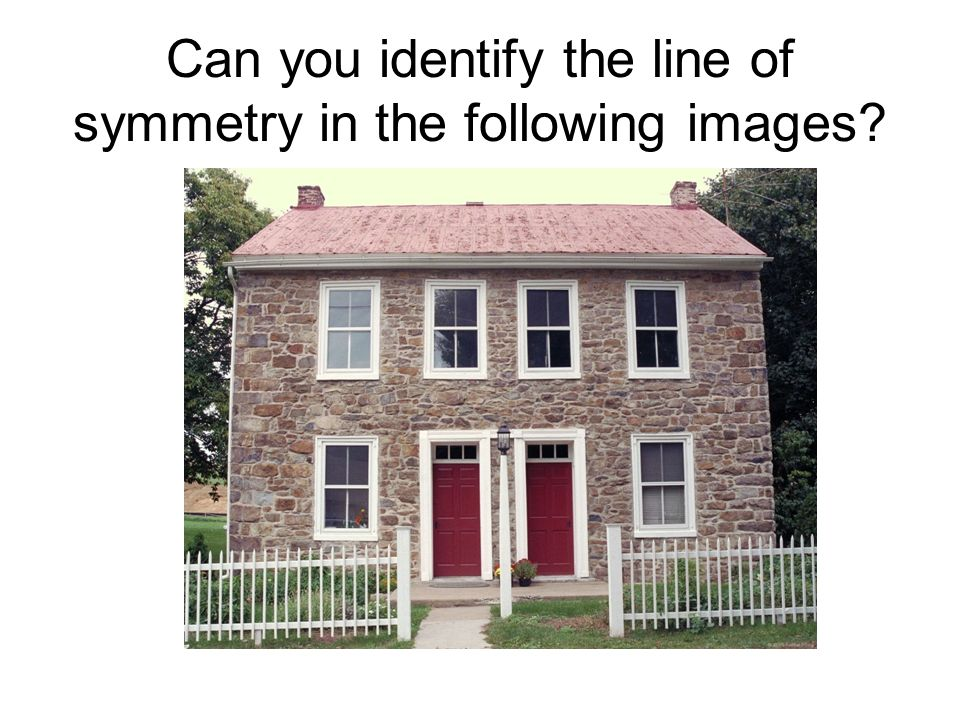 Can you identify the line of symmetry in the following images?