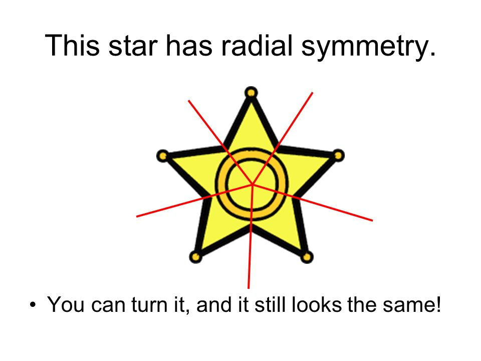 This star has radial symmetry. You can turn it, and it still looks the same!