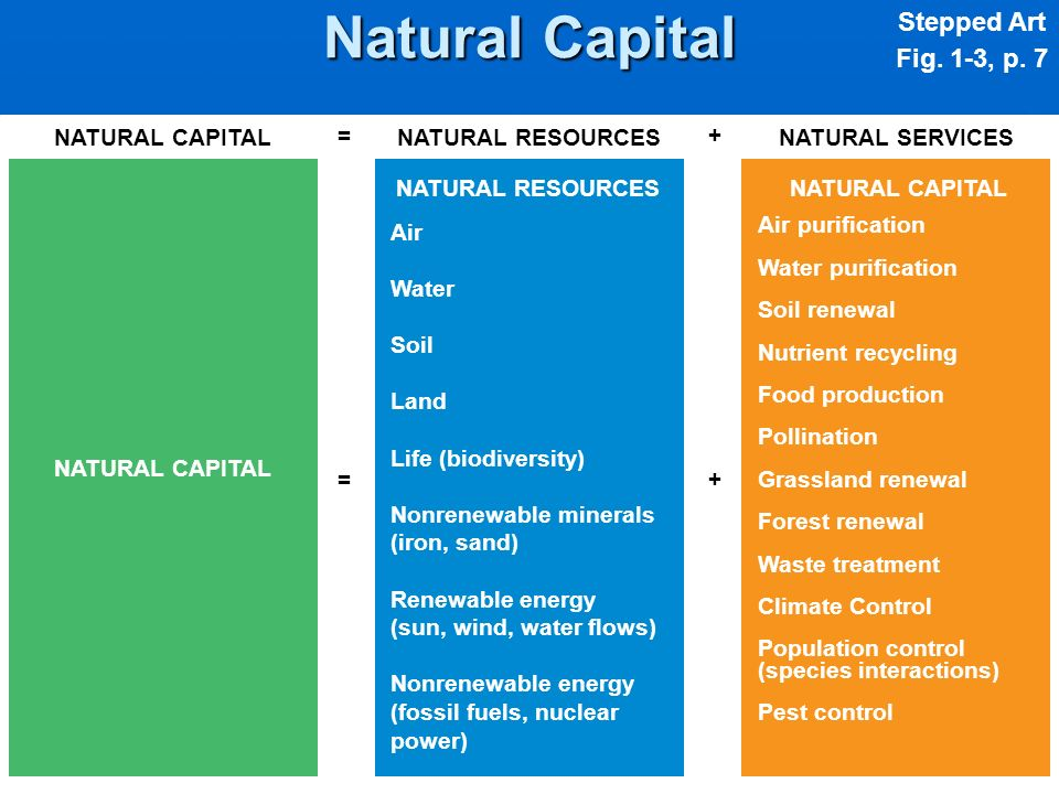NATURAL CAPITAL NATURAL RESOURCES Air Water Soil Land Life (biodiversity) Nonrenewable minerals (iron, sand) Renewable energy (sun, wind, water flows)