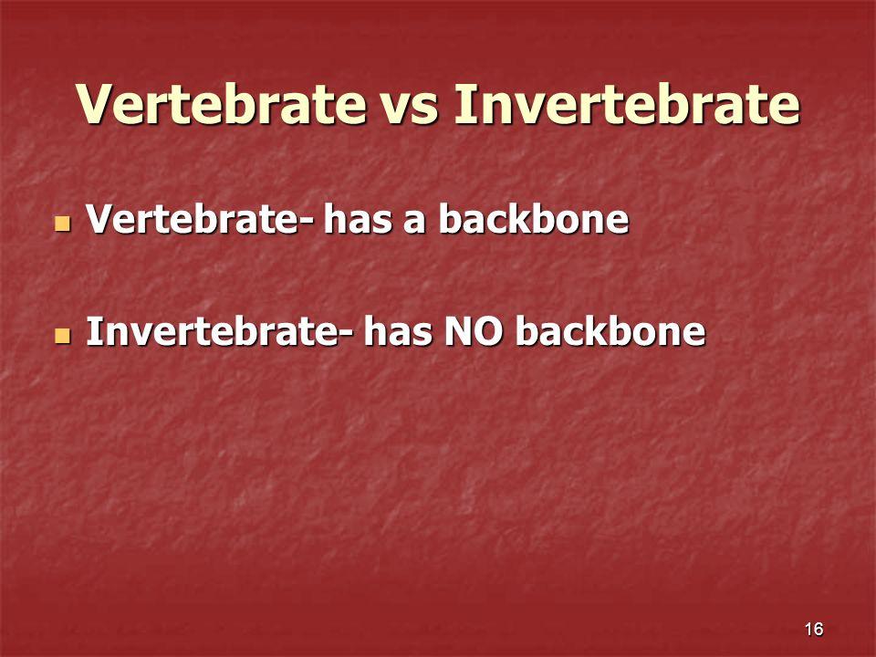 Vertebrate vs Invertebrate Vertebrate- has a backbone Vertebrate- has a backbone Invertebrate- has NO backbone Invertebrate- has NO backbone 16