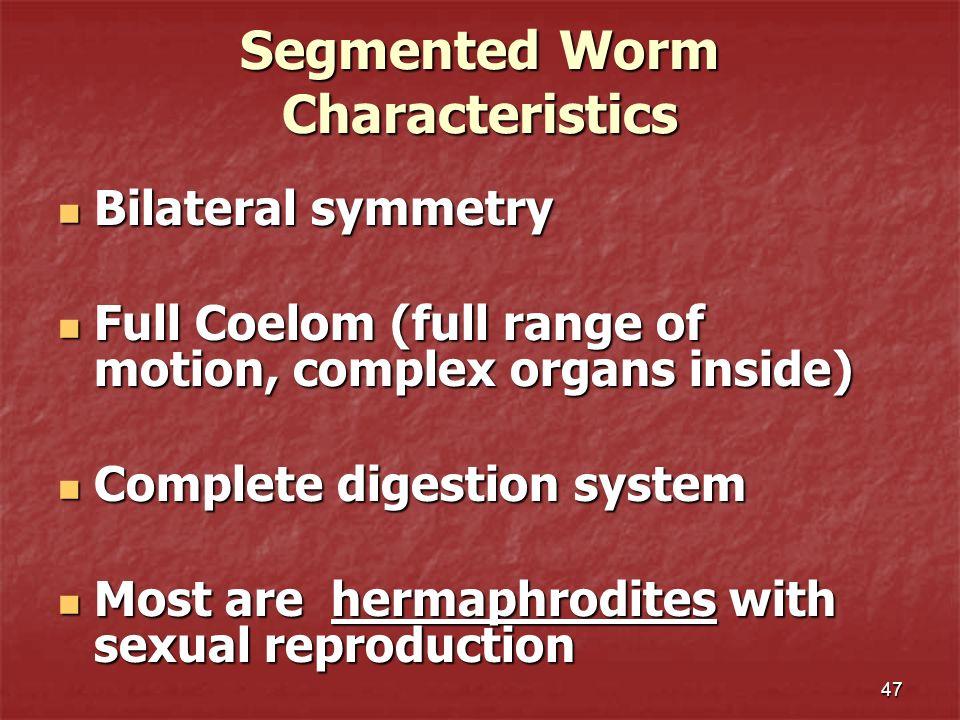 47 Segmented Worm Characteristics Bilateral symmetry Bilateral symmetry Full Coelom (full range of motion, complex organs inside) Full Coelom (full ra