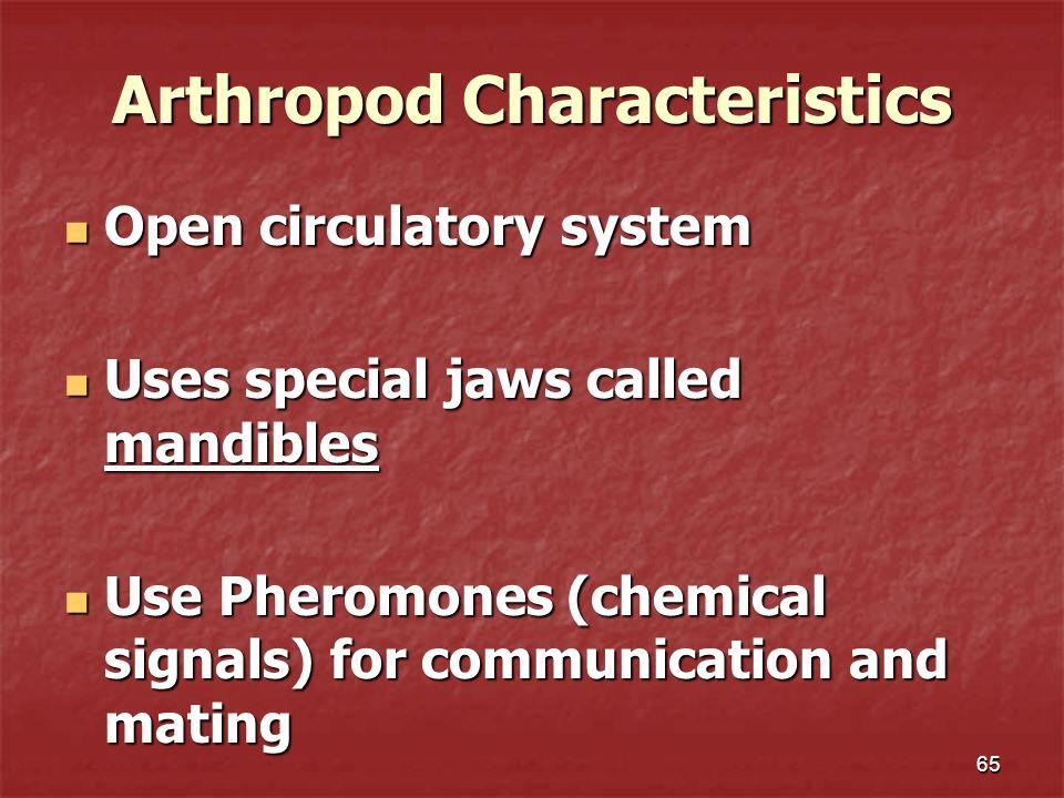 Arthropod Characteristics Open circulatory system Open circulatory system Uses special jaws called mandibles Uses special jaws called mandibles Use Ph