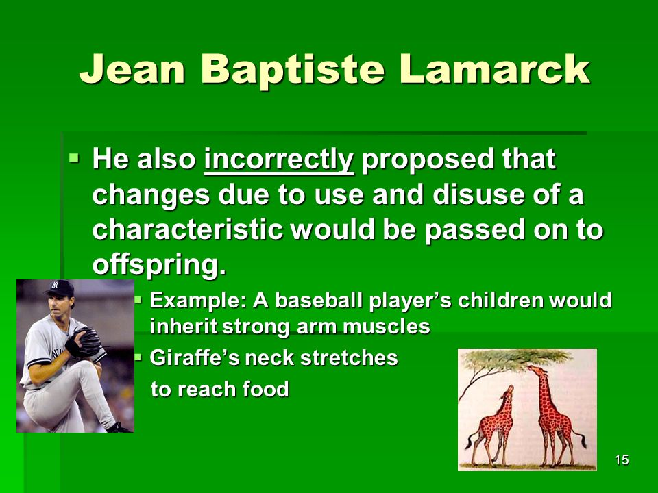 Jean Baptiste Lamarck He also incorrectly proposed that changes due to use and disuse of a characteristic would be passed on to offspring. He also inc