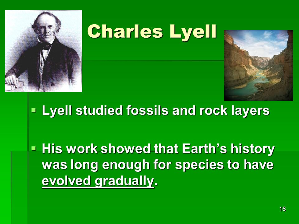 Charles Lyell Lyell studied fossils and rock layers Lyell studied fossils and rock layers His work showed that Earths history was long enough for spec