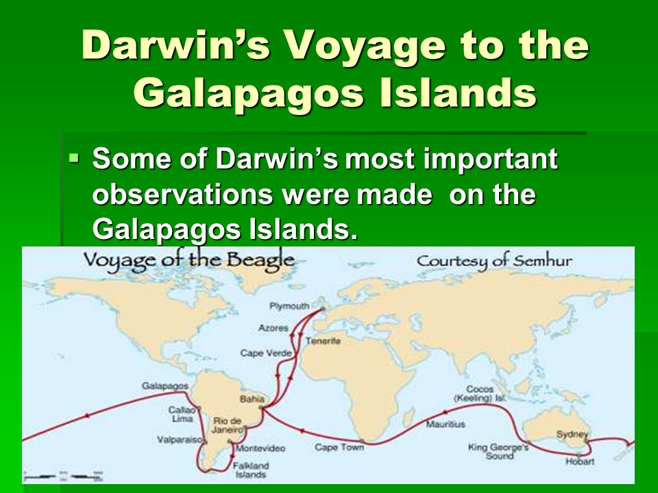 Darwins Voyage to the Galapagos Islands Some of Darwins most important observations were made on the Galapagos Islands. Some of Darwins most important