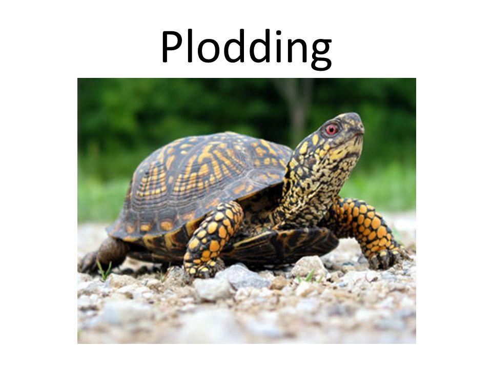 Plodding