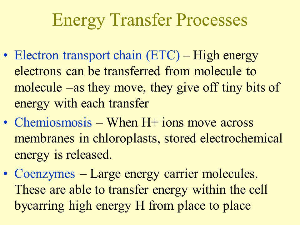 Energy Transfer Processes Electron transport chain (ETC) – High energy electrons can be transferred from molecule to molecule –as they move, they give