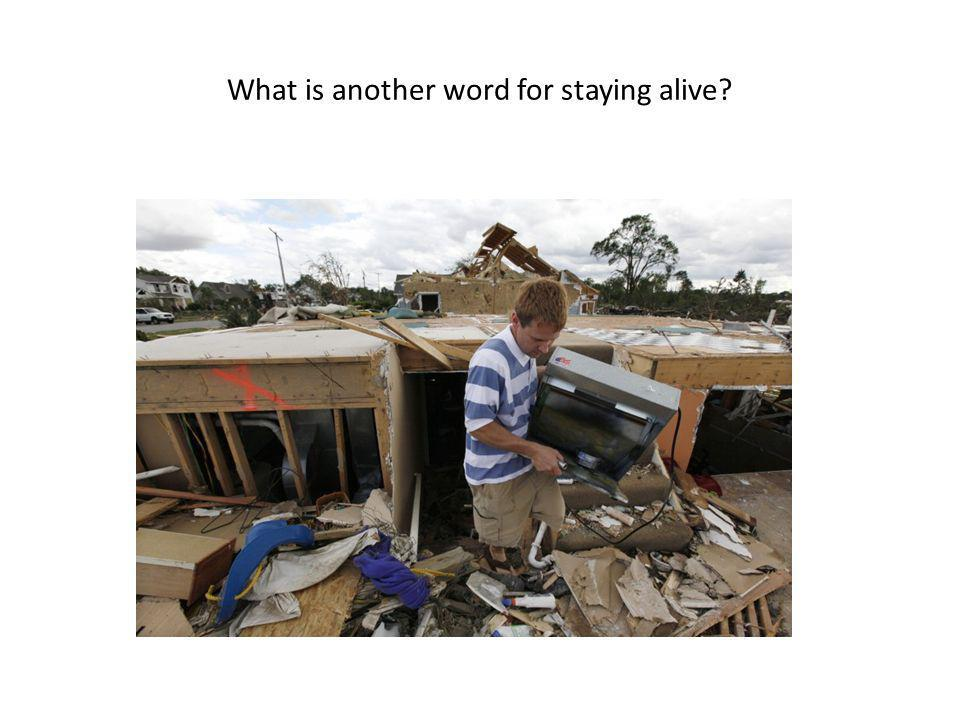 What is another word for staying alive?