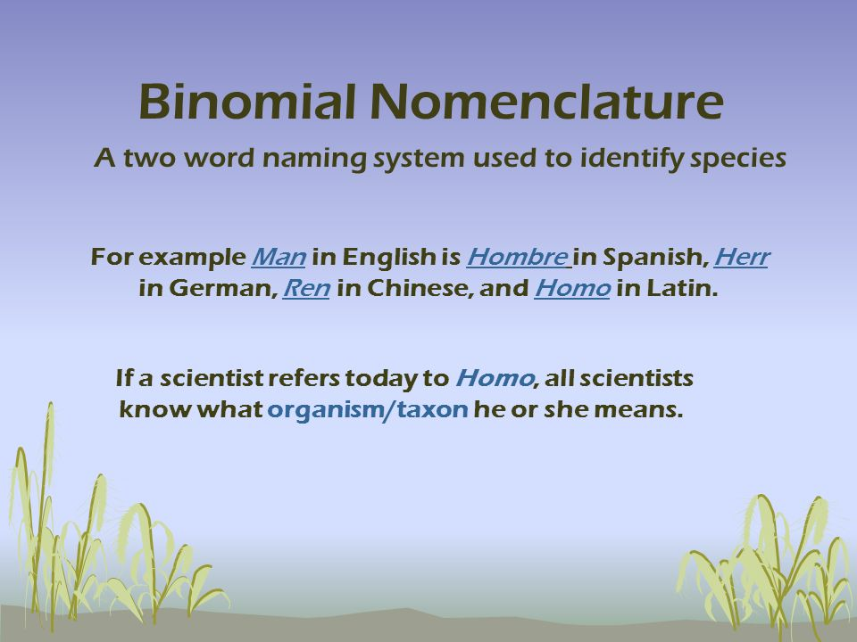 For example Man in English is Hombre in Spanish, Herr in German, Ren in Chinese, and Homo in Latin. If a scientist refers today to Homo, all scientist