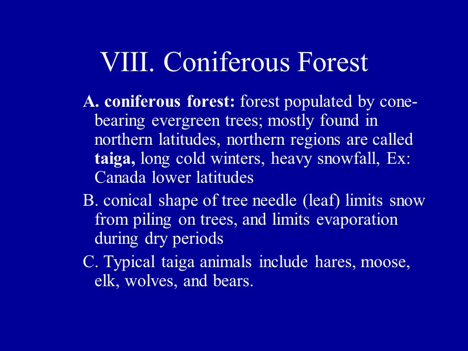 VIII. Coniferous Forest A. coniferous forest: forest populated by cone- bearing evergreen trees; mostly found in northern latitudes, northern regions