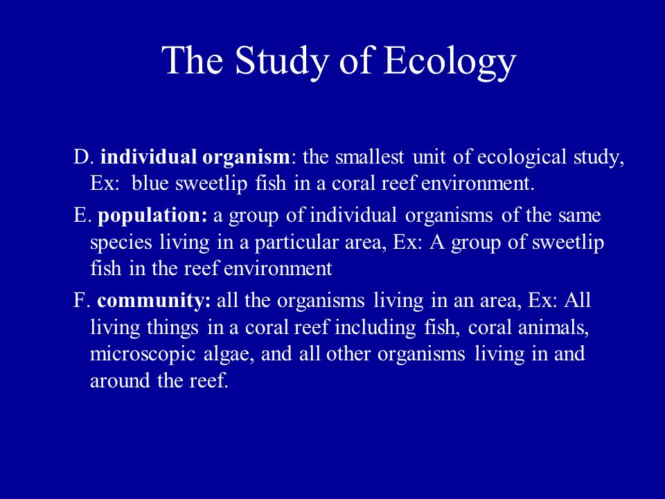 The Study of Ecology D. individual organism: the smallest unit of ecological study, Ex: blue sweetlip fish in a coral reef environment. E. population: